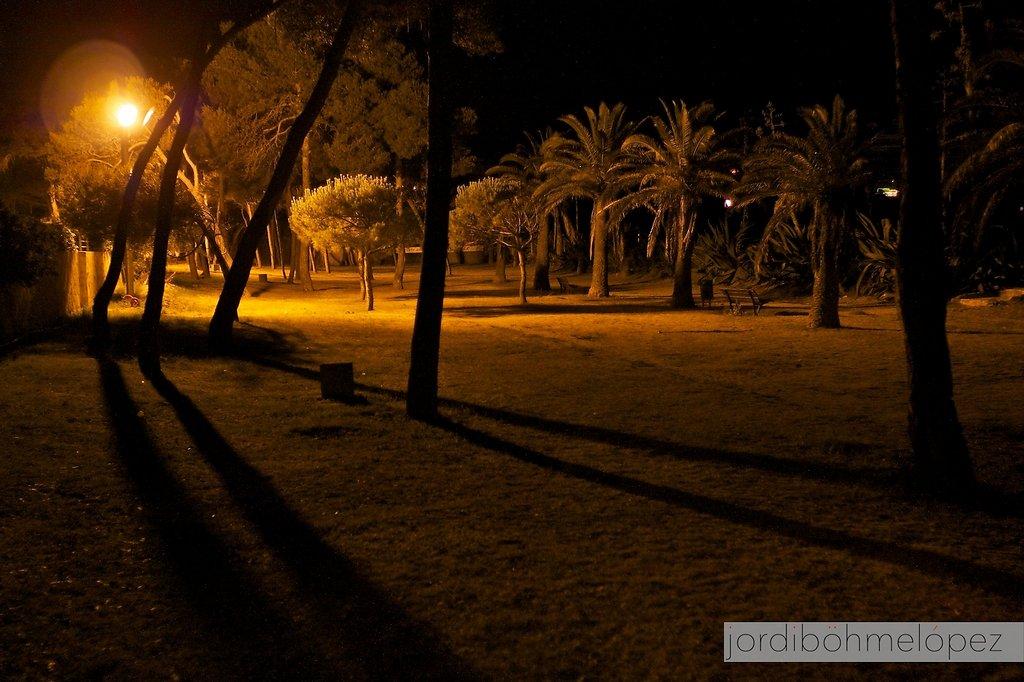 Altafulla de nit